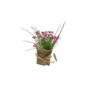 Fleurs mini sedum 15x6cm