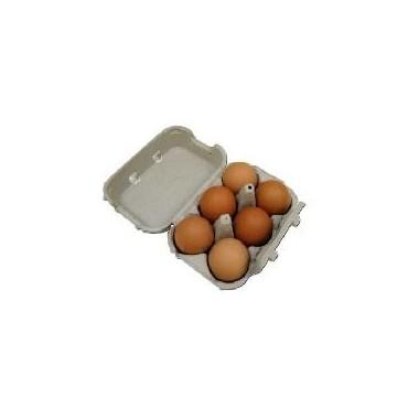 Barquettes œufs x6
