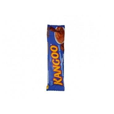 Kangoo stick poudre...